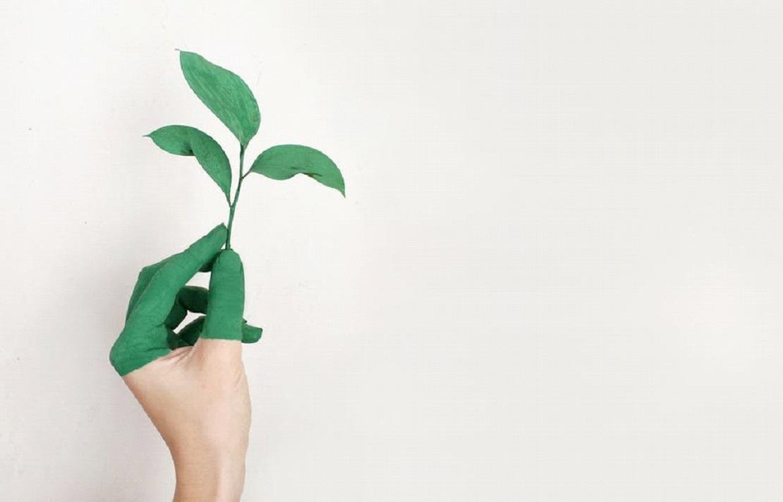 Je kantoor duurzamer inrichten, hoe doe je dat? post thumbnail image